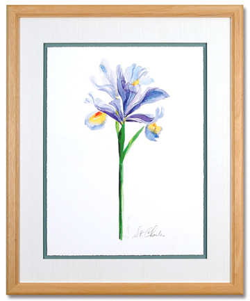 Watercolor Iris I