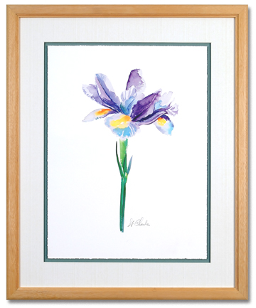 Watercolor Iris II