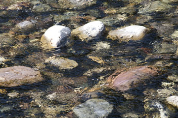 Rocks And Water IIi